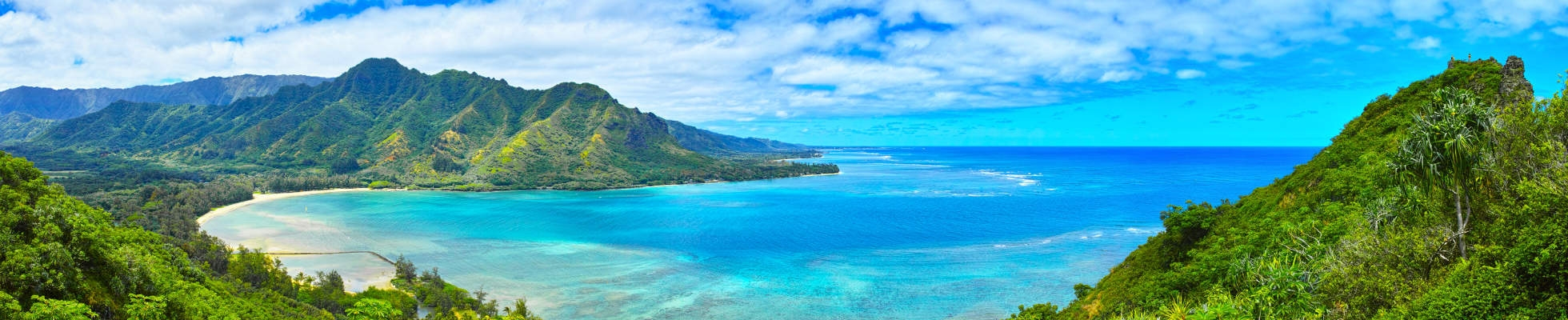 Preserving Paradise: Hawaii Summer Service and Adventure Program