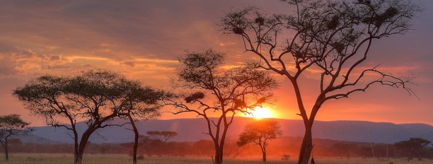 Sunset on Safari in Tanzania